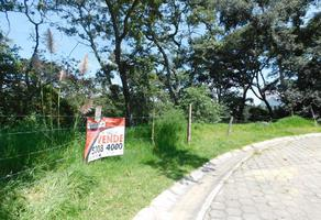 Foto de terreno habitacional en venta en  , valle escondido, atizapán de zaragoza, méxico, 17775598 No. 01
