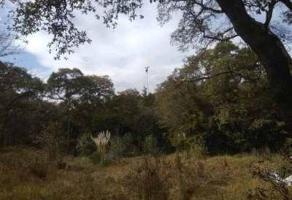 Foto de terreno habitacional en venta en  , hacienda de valle escondido, atizapán de zaragoza, méxico, 5836675 No. 01
