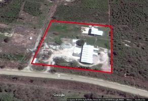Foto de terreno habitacional en renta en  , valle oriente, ciudad valles, san luis potosí, 11699651 No. 01