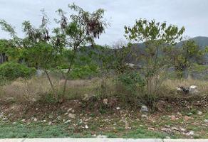 Foto de terreno habitacional en venta en  , valles de cristal, monterrey, nuevo león, 13867842 No. 01