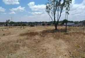 Foto de terreno habitacional en venta en vega de madero , el banco (el banco vega de madero), tepeji del río de ocampo, hidalgo, 0 No. 01