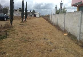 Foto de terreno habitacional en venta en vendo terreno en guadalupe victoria , la y, otzolotepec, méxico, 0 No. 01