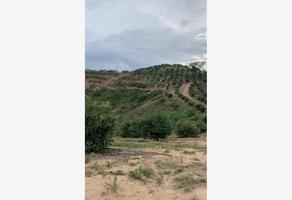 Foto de terreno comercial en venta en venta de huerta sembrada de aguacate méndez localizada en jalisco 1, guadalajara centro, guadalajara, jalisco, 17640561 No. 01