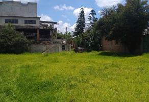 Foto de terreno habitacional en venta en venta de terreno en el centro de san martín texmelucan, puebla. , centro, san martín texmelucan, puebla, 13095914 No. 01