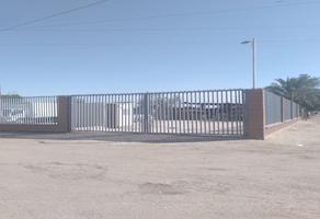 Foto de terreno habitacional en venta en  , venustiano carranza, mexicali, baja california, 0 No. 01