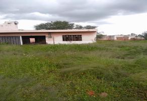 Foto de terreno habitacional en venta en venustiano carranza predio 2 los tepetates , paso blanco, jesús maría, aguascalientes, 0 No. 01