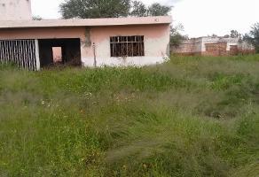 Foto de terreno habitacional en venta en venustiano carranza predio 2 paso blanco , tepetates, jesús maría, aguascalientes, 0 No. 01