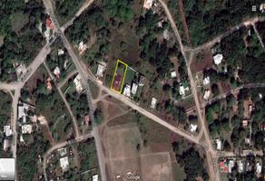 Foto de terreno habitacional en venta en veracruz , lindavista, pueblo viejo, veracruz de ignacio de la llave, 9900732 No. 01