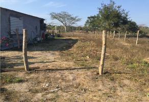 Foto de terreno habitacional en venta en  , veracruz, veracruz, veracruz de ignacio de la llave, 0 No. 01