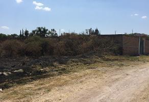 Foto de terreno habitacional en venta en vereda del jazmin , los sauces, tlajomulco de zúñiga, jalisco, 14376657 No. 01