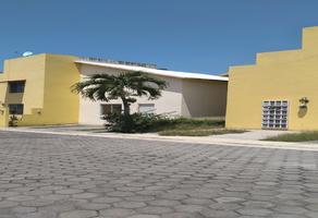 Foto de casa en venta en vicente guerrero , el zapote, emiliano zapata, morelos, 0 No. 01