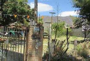 Foto de terreno habitacional en venta en vicente guerrero poniente , jocotepec centro, jocotepec, jalisco, 0 No. 01
