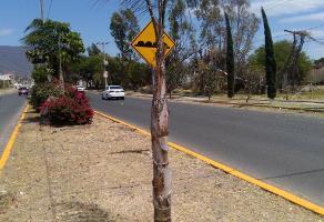 Foto de terreno habitacional en venta en vicente guerrreo , jocotepec centro, jocotepec, jalisco, 3042312 No. 01