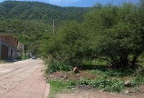 Foto de terreno habitacional en venta en vicente morales , jocotepec centro, jocotepec, jalisco, 6191920 No. 01