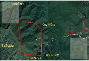 Foto de terreno habitacional en venta en  , victoria, victoria, tamaulipas, 12373883 No. 01