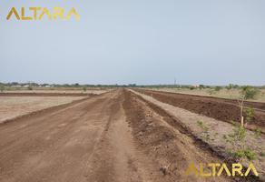 Foto de terreno habitacional en venta en  , victoria, victoria, tamaulipas, 20478804 No. 01