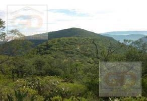 Foto de terreno habitacional en venta en  , victoria, victoria, tamaulipas, 9550980 No. 01