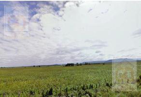 Foto de terreno habitacional en venta en  , victoria, victoria, tamaulipas, 9601522 No. 01