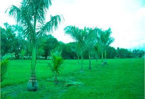 Foto de terreno habitacional en venta en  , villa corona centro, villa corona, jalisco, 2034128 No. 01