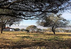 Foto de terreno habitacional en venta en camino al monte , villa corona centro, villa corona, jalisco, 2989889 No. 01
