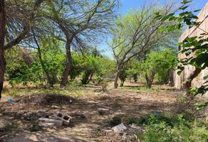 Foto de terreno habitacional en venta en  , villa de guadalupe, lerdo, durango, 12739983 No. 01