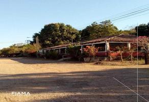 Foto de terreno habitacional en renta en  , villa hidalgo centro, santiago ixcuintla, nayarit, 18358095 No. 01