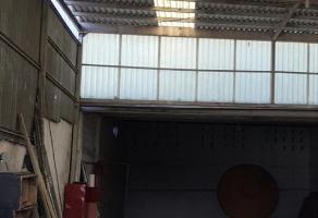 Foto de nave industrial en venta en  , villa juárez (rancheria juárez), chihuahua, chihuahua, 12339886 No. 01