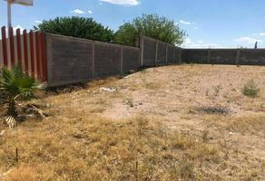 Foto de terreno habitacional en renta en  , villa juárez (rancheria juárez), chihuahua, chihuahua, 0 No. 01