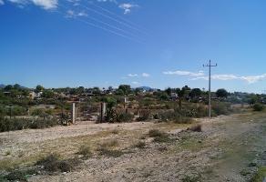 Foto de terreno habitacional en venta en villa rica , san juan de la vaquería, saltillo, coahuila de zaragoza, 10847089 No. 01
