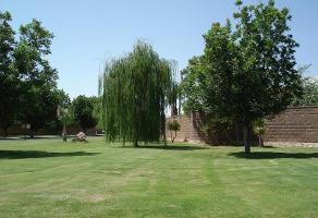 Foto de terreno habitacional en venta en  , villa san isidro, torreón, coahuila de zaragoza, 0 No. 01