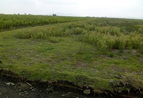 Foto de terreno habitacional en venta en villa seca (la providencia villa seca) , villa seca, otzolotepec, méxico, 0 No. 01