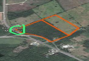 Foto de terreno habitacional en venta en villahermosa - chetumal , chetumal (internacional de chetumal), othón p. blanco, quintana roo, 0 No. 01