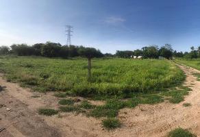 Foto de terreno habitacional en venta en  , villas de altamira, altamira, tamaulipas, 11699981 No. 01