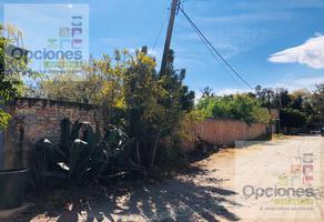 Foto de terreno habitacional en venta en  , villas de san roque, salamanca, guanajuato, 11055236 No. 01