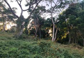 Foto de casa en venta en villas del tropico , los ayala, compostela, nayarit, 0 No. 01