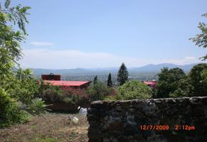 Foto de terreno habitacional en venta en vista alegre , 3 de mayo, emiliano zapata, morelos, 0 No. 01