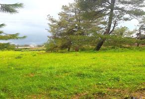 Foto de terreno habitacional en venta en  , vista bella, pátzcuaro, michoacán de ocampo, 0 No. 01