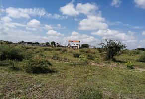 Foto de terreno habitacional en venta en  , lomas del sur, aguascalientes, aguascalientes, 9707696 No. 01