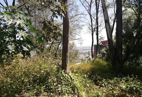 Foto de terreno habitacional en venta en  , vista del valle sección bosques, naucalpan de juárez, méxico, 18319876 No. 01