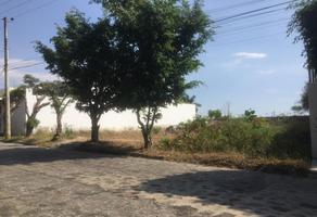 Foto de terreno habitacional en venta en  , vista hermosa, cuernavaca, morelos, 0 No. 01