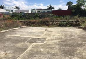 Foto de terreno comercial en renta en  , vista hermosa, cuernavaca, morelos, 7531048 No. 01