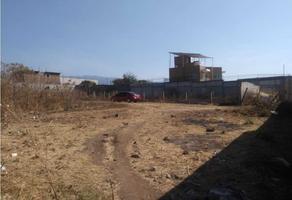 Foto de terreno habitacional en venta en  , vista real ahuatepec, cuernavaca, morelos, 0 No. 01