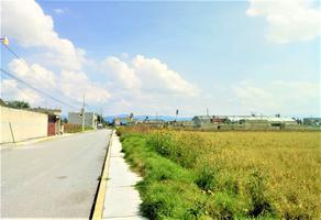 Foto de terreno habitacional en venta en vlbd. aeropuerto , ferrocarriles nacionales, toluca, méxico, 0 No. 01