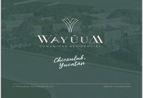Foto de terreno habitacional en venta en wayúum , progreso de castro centro, progreso, yucatán, 0 No. 01