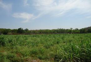 Foto de rancho en venta en x x, las fincas de tequesquitengo, jojutla, morelos, 16682570 No. 01