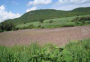 Foto de terreno comercial en venta en x x, tlaltizapan de pacheco, tlaltizapán de zapata, morelos, 0 No. 01