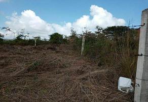 Foto de terreno habitacional en venta en xalapa-enriquez , emiliano zapata, veracruz, veracruz de ignacio de la llave, 0 No. 01