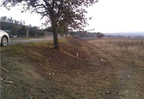 Foto de terreno habitacional en venta en  , xalpa, temamatla, méxico, 18965779 No. 01