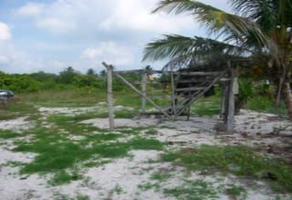Foto de terreno habitacional en venta en  , xcalak, othón p. blanco, quintana roo, 16170117 No. 01
