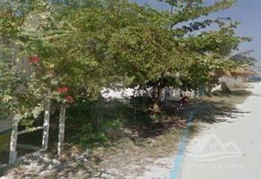 Foto de terreno habitacional en venta en  , xcalak, othón p. blanco, quintana roo, 0 No. 01